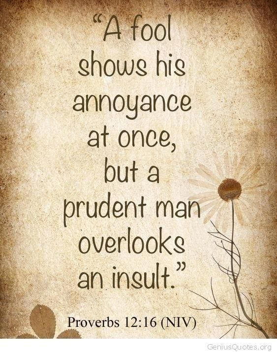Fantastic Wisdom Quotes Bible Or Bible Quote Quote 38 Good Wisdom