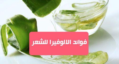 فوائد الالوفيرا للشعر الألوفيرا هي واحدة من أكثر المكونات السحرية والمفيدة التي يمكنك وضعها على شعرك تحتويالألوفيرا على 98 في الم Aloe Vera Vegetables Cucumber