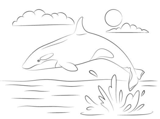 Coloring Page Base Whale Coloring Pages Coloring Pages Cartoon