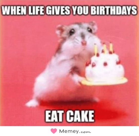 When Life Gives You Birthdays Eat Cake Funny Birthday Meme Happy Birthday Meme Birthday Meme