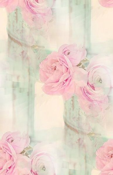 Washed out fade of pink roses setting iphone wallpaper for Tenue shabby chic