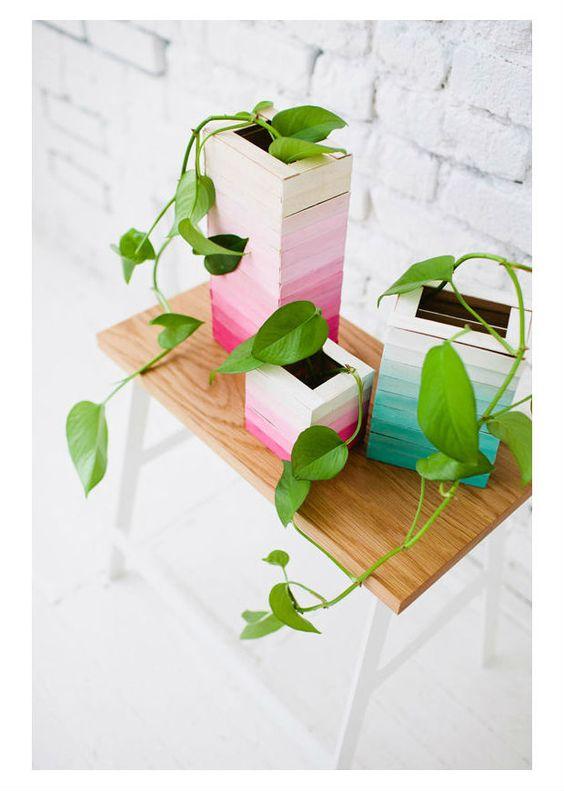 Vaso de plantas com palito de picolé: