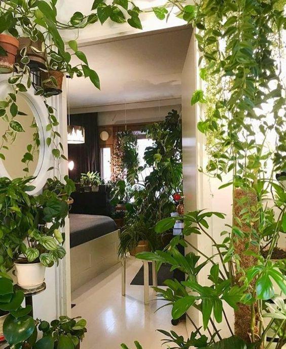 planters all over a home even in the bedroom #gardenIdeas #garden #gardening #plants #homeDecor #indoor