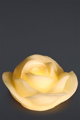 Buy Fragranced Rose Flower Flameless LED Candle from the Next UK online shop