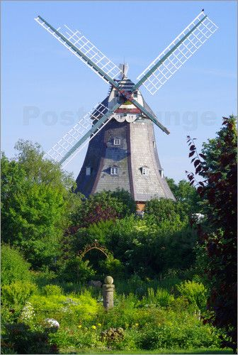 Windmühlen Idyll ( Insel Föhr Deutschland)
