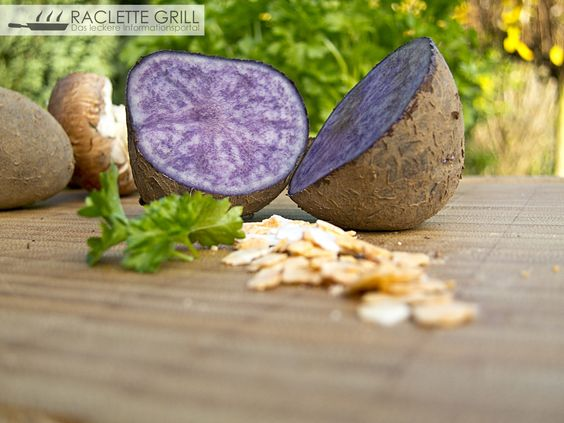 Lila #Kartoffel, Sorte #Valvi, etwas herber im Geschmack, ideal für ein bunt fröhliches #Raclette Essen :)