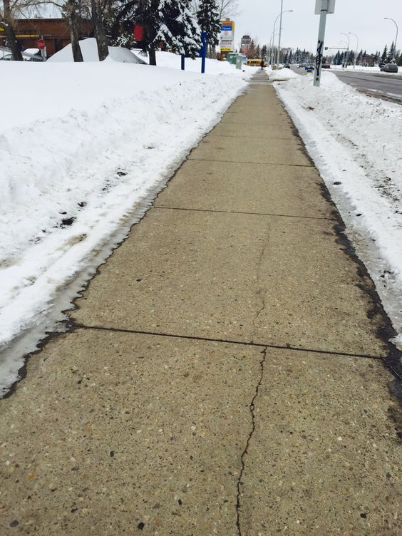 I give credit where credit is due; This sidewalk is a great! Thanks City of Edmonton.