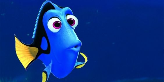 This is dory