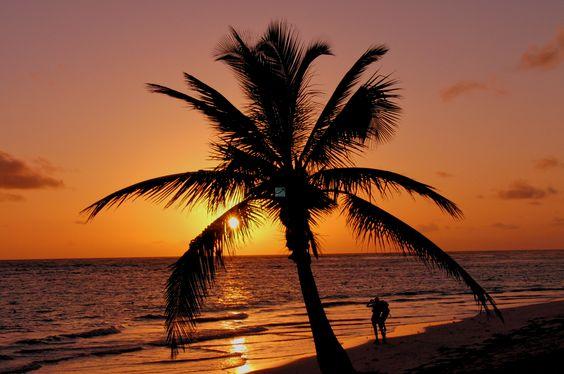 Wohin soll die Reise gehen ?  Ungetrübten Urlaub in Zeiten der Flüchtlingsströme kann man in bestimmten Regionen wie eh und je genießen. Das richtig gewählte Urlaubsland ist dabei entscheidend. Heute unser Tipp: die Dominikanische Republik mit ihrem beliebten Urlaubsziel, Punta Cana. Seit vielen Jahren im Aufwärtstrend und bei deutschen Urlaubern ganz oben auf der Wunschliste ist die karibische Insel Dominikanische Republik. Günstig zu buchen über http://bin-verreist.de/punta-cana.html