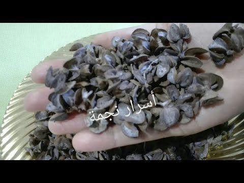هذا هو المكون الوحيد لعلاج الشيب بسبب نقص مادة الميلانين الملونة للشعر Youtube Cute Baby Animals Learn Arabic Language Cute Babies