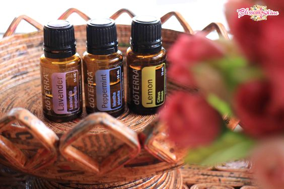 Isi dari doterra trio beginners: lavender oil, peppermint oil dan lemon oil