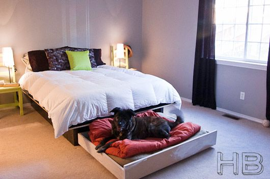 Hidden drawer or make into a trundle bed... such a good idea to keep the dog bed, blankets, and pillows tucked away...