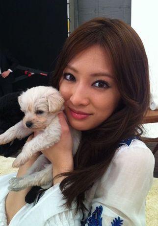 子犬と北川景子