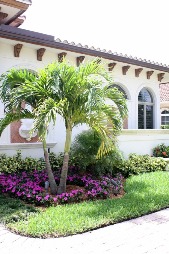 Home tours palms and pretty flowers on pinterest for Plants around trees landscaping