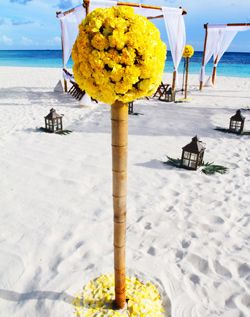 Aisle decorations, topiary and lanterns in sand.