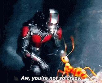 Ant-Man Scott Lang