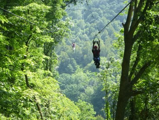 Navitat Canopy Adventures - Asheville Zipline Add to trip 242 Poverty Branch Road Barnardsville NC | Mountains | Pinterest | Barnardsville nc Asheville ... & Navitat Canopy Adventures - Asheville Zipline Add to trip 242 ...