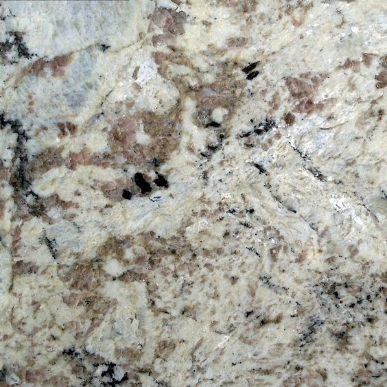 Stonemark Granite 3 In Granite Countertop Sample In White