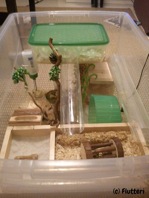 Valtteri 39 s bin cage flickr photo sharing hamsters for Diy dustbin ideas