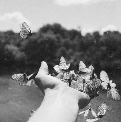 Imagen de butterfly, hand, and nature