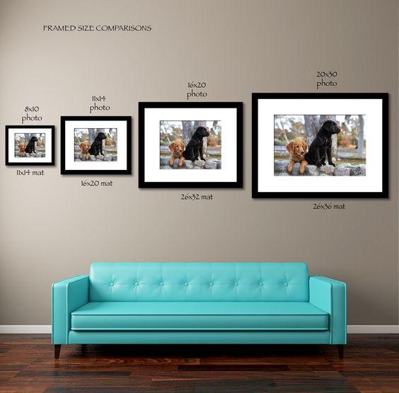 frame size comparison image