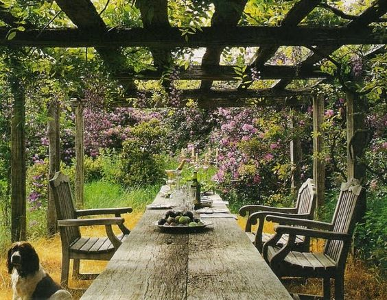 Long wooden table with wooden chairs underneath a vine