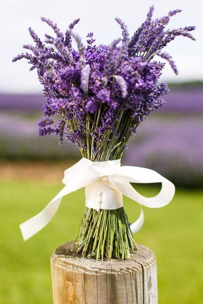 decoracao-receber-flores-lavanda-arranjos-studio-lab-decor (8)