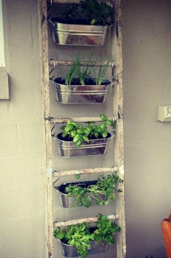 hang indoor planters on an old ladder  #gardenIdeas #garden #gardening #plants #homeDecor #indoor #verticalGarden