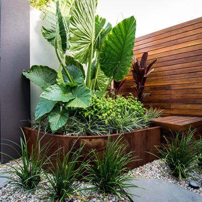 Cultivart Landscape Design Perth The Garden Design Specialist Tropical Garden Design Garden Pool Design Backyard Landscaping Designs