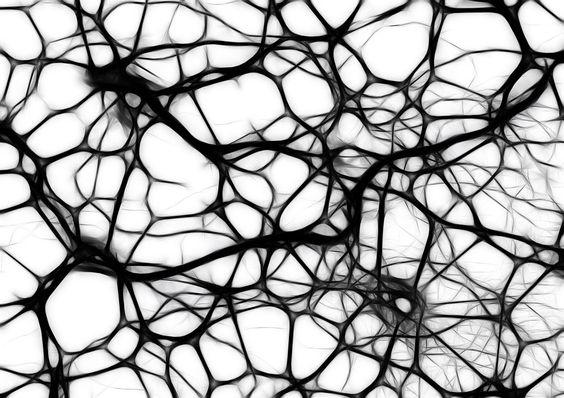 Free illustration: Neurons, Brain Cells - Free Image on Pixabay ...:
