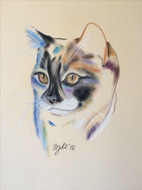 Katze, cat, chalk pastell ,  original artwork, Kunst, by MarikaSlickers