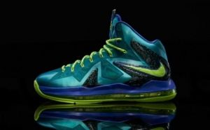 US$ 66.58  Nike LeBron James 10 Shoes Mens   075