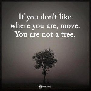 If you don't like where you are, move. You are not a tree. In life, we get to make choices, but oftentimes, we get mentally paralyzed just thinking about our next move. We stay in jobs we hate in towns we don't enjoy simply out of familiarity and fear of changing our lives. However, to live the most fulfilling, happiest life possible, change is necessary. You control your life, so you get to decide how it will unfold. Make sure you listen to your heart always.