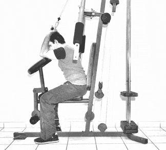 ejercicios de triceps 11
