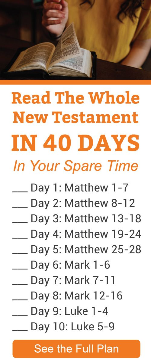 Read The Whole New Testament In 40 Days In Your Spare Time Scripture Reading Scripture Writing Plans Read Bible