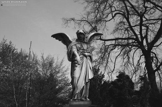 #Graveyard #Friedhof #Düsseldorf #Grabengel #Friedhofsengel #angel
