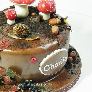 north+star+cakes | northstarcakes @ CakesDecor.com - cake decorating website