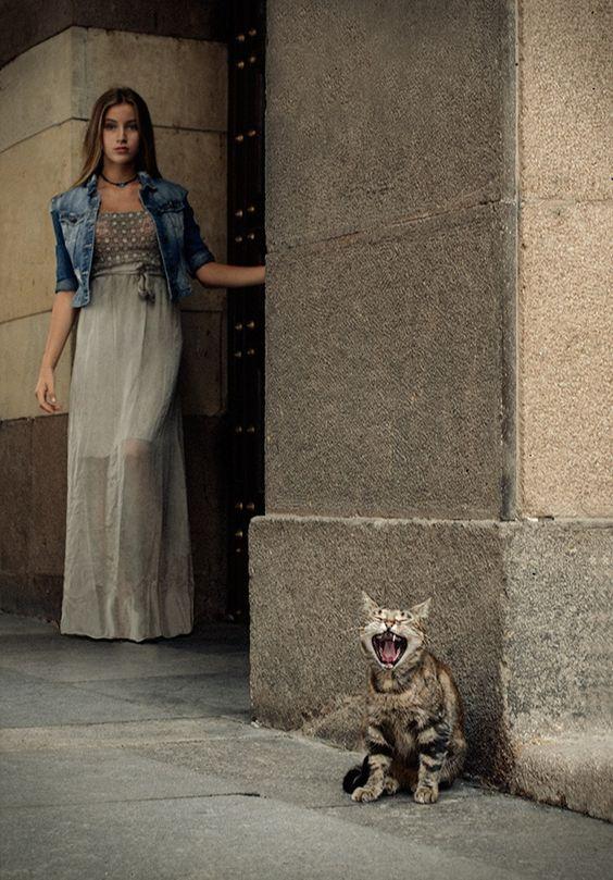 My  cats  :) by Tanya   Markova - Nya on 500px