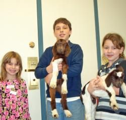 "Good memories:  The look on my assistant's face when I said, ""Karen, I need a goat.""  From a station on Chad Gadya from our very first Passover Prep School program."