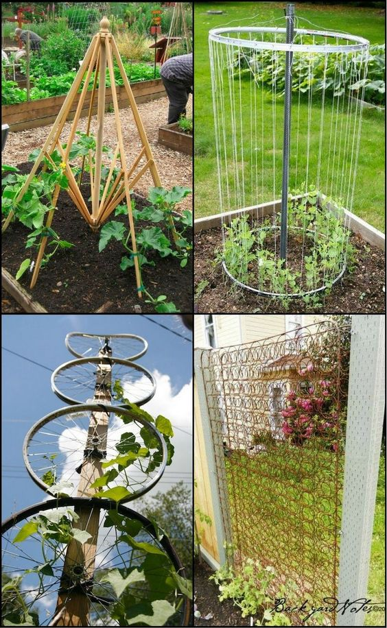 Making your own trellis has never been this easy or cheap! These simple trellis ideas won't cost you a fortune.  http://ideas2live4.com/2015/09/12/trellis-from-recycled-materials/  Would you like to have one of these in your backyard?
