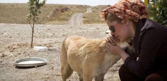 Irã confisca cães de estimação para combater a 'vulgar cultura ocidental'