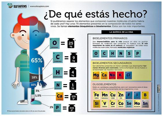 .  ¿De qué y cuántos elementos químicos estás hecho?  https://www.elesapiens.com/contenidos-educativos/unidades-didacticas/unidad/la-quimica-y-tu .