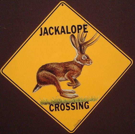 Jackalope Crossing: