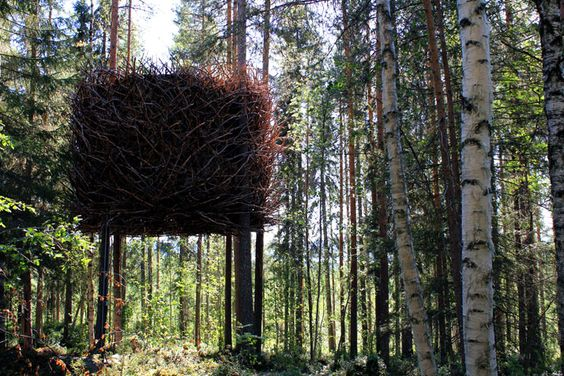 http://www.yatzer.com/assets/Article/2813/images/Treehotel-photo-Peter-Lundstrom-yatzer-3.jpg