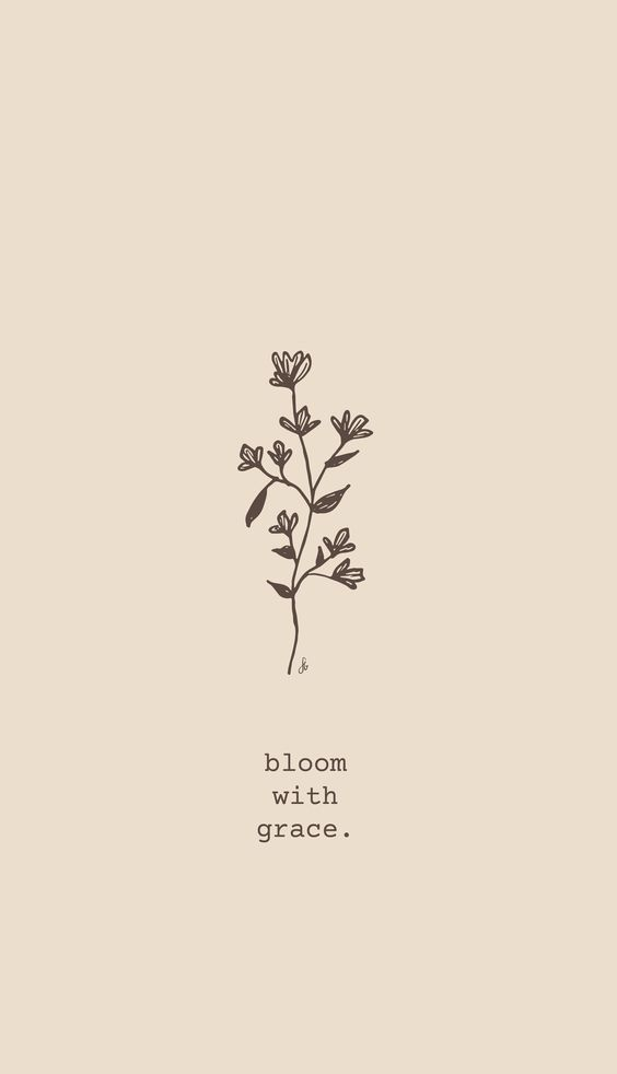 Bloom Where You Are Planted Inspirational Motivational Quotes Bloom Quotes Christian Quotes Inspirational Wallpaper Quotes
