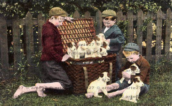 Vintage Ansichtskarte An Unexpected Present, Hundebabies, Buben  zum direkten digitalen download, 2 dateien von arteaustria auf Etsy