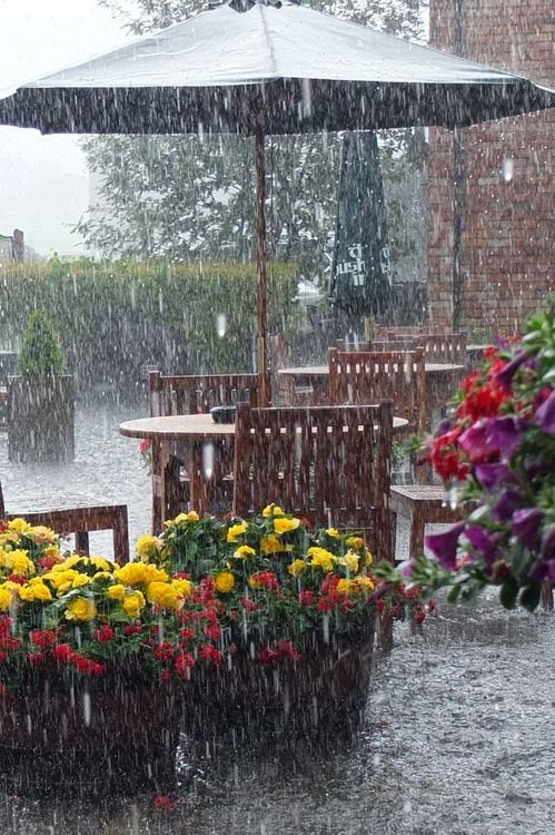 and love a sudden summer storm!