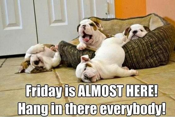 Friday is almost here