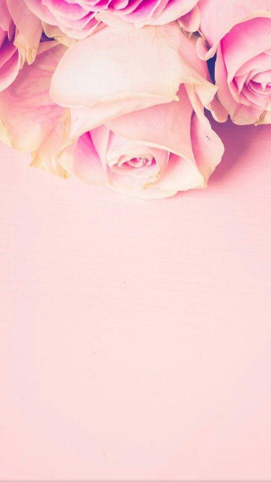 Wallpaper Iphone Shinyflo Iphone Shinyflo Wallpaper Image Fleur Fond Ecran Nature Fleurs