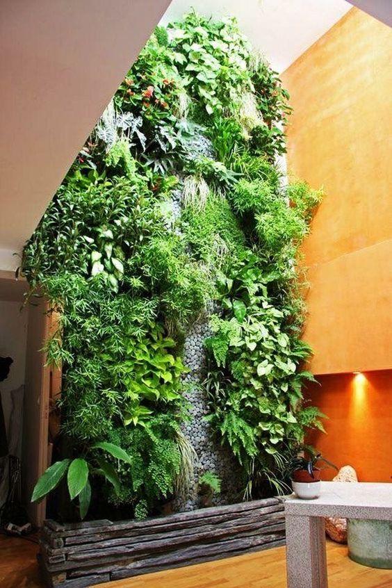 indoor wall of plants, mostly ferns #gardenIdeas #garden #gardening #plants #homeDecor #indoor